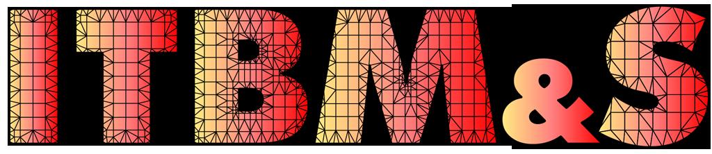 Logo ITBM&S